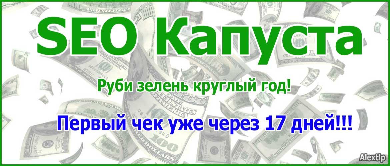 SEO Капуста – Руби зелень круглый год!